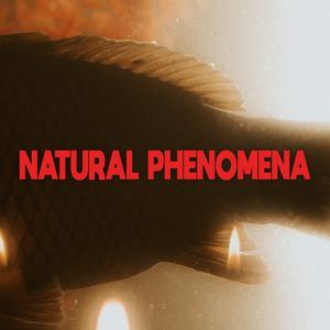 Natural Phenomena - Natural Phenomena